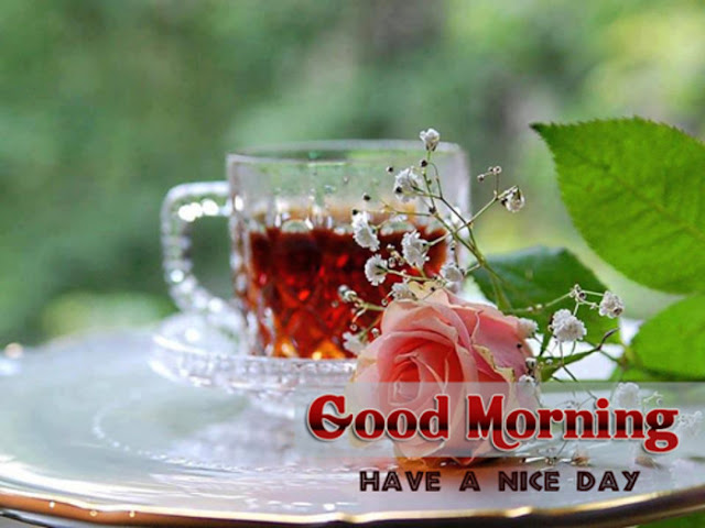 Good-Morning-sms-in-English