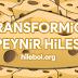 Transformice Peynir Hilesi 2017