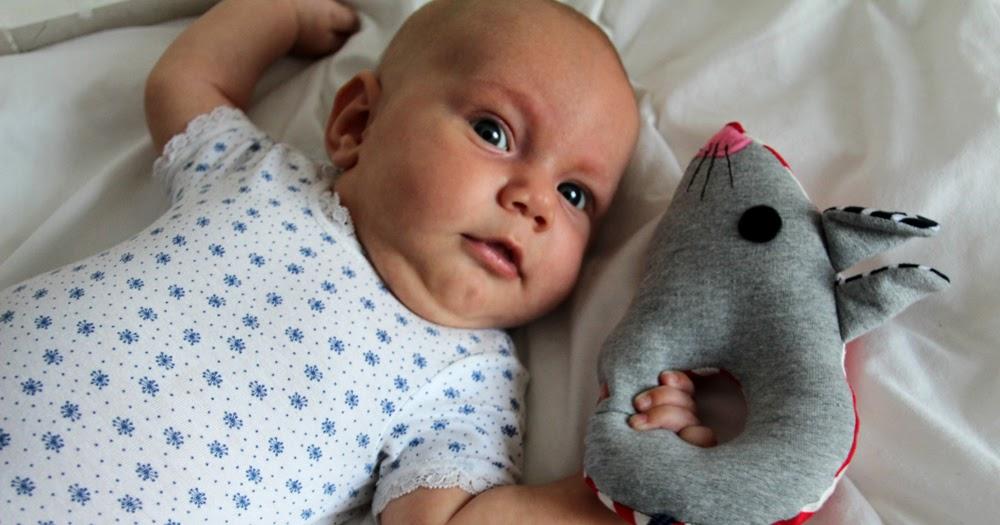 liiviundliivi: Rund ums Baby: Babyrasseln, die Zweite