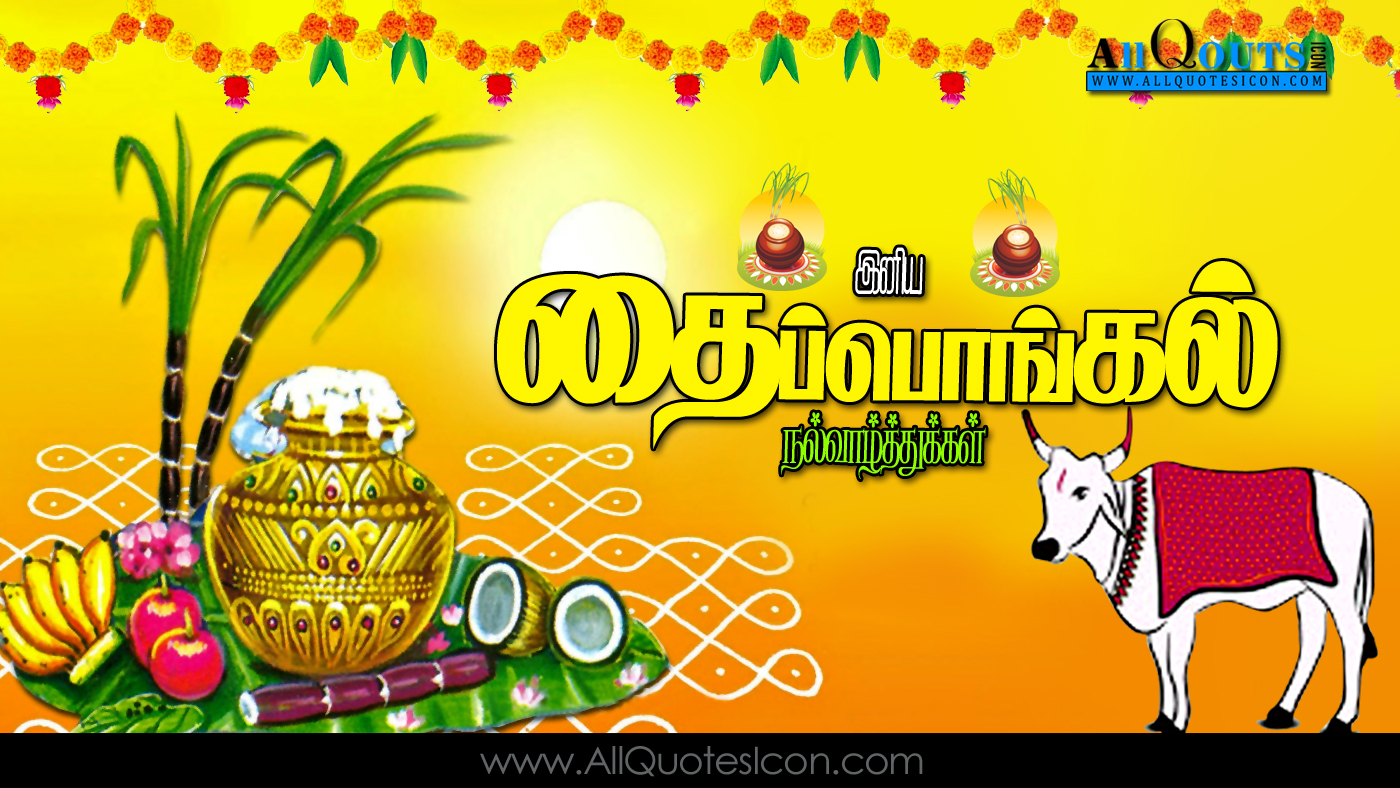 Happy pongal greetings tamil quotes hd wallpapers best pongal wishes thai pongal wishes in tamil best thai pongal wishes nice thai pongal wishes m4hsunfo