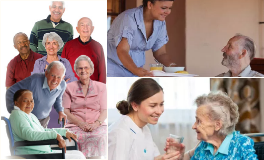 acilities-to-senior-citizens-by-home-care-service-paramnews-govt-to-prescribe-standards