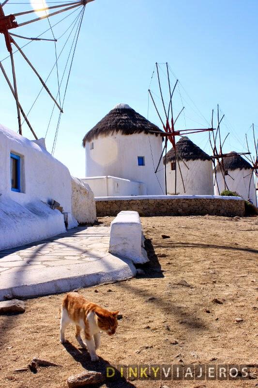 Mykonos. Molinos de viento