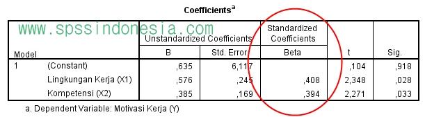 Cara Menghitung SE dan SR dalam Analisis Regresi Linear Berganda