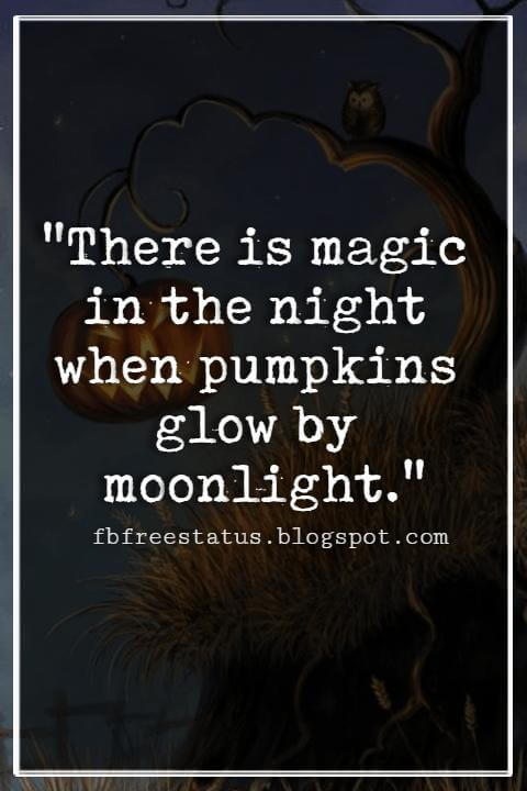"Halloween Quotes And Sayings, ""There is magic in the night when pumpkins glow by moonlight."""