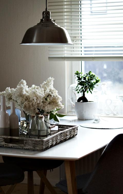 flowers der letzte flieder. Black Bedroom Furniture Sets. Home Design Ideas