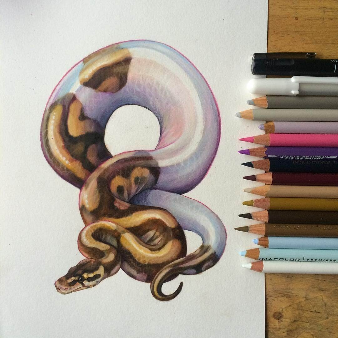 04-Morph-Python-Snake-Grace-Fantasy-Animals-Colored-Pencils-Drawings-www-designstack-co