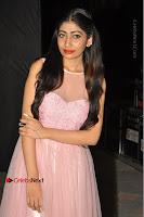 Actress Nidhisha Reddy Pos in Beautiful Pink Dress at Virus Telugu Movie Audio Launch .COM 0050.JPG