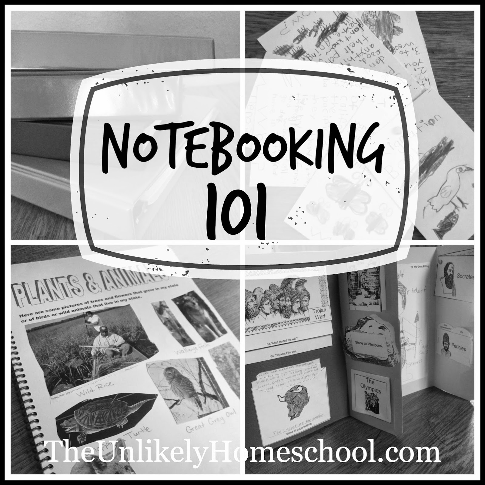 Notebooking 101: Different Types of Notebooks {with a vlog} The Unlikely Homeschool