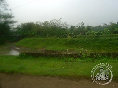Ini lokasi yang akan dibangun taman Bendungan Macan... Taman Macan.. Tanpa Macan ...
