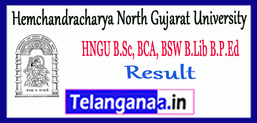 HNGU Hemchandracharya North Gujarat University B.Sc BCA BSW B.Lib B.P.Ed Result
