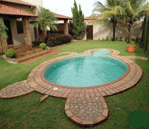 Sea Turtle Shape Pool Design Idea