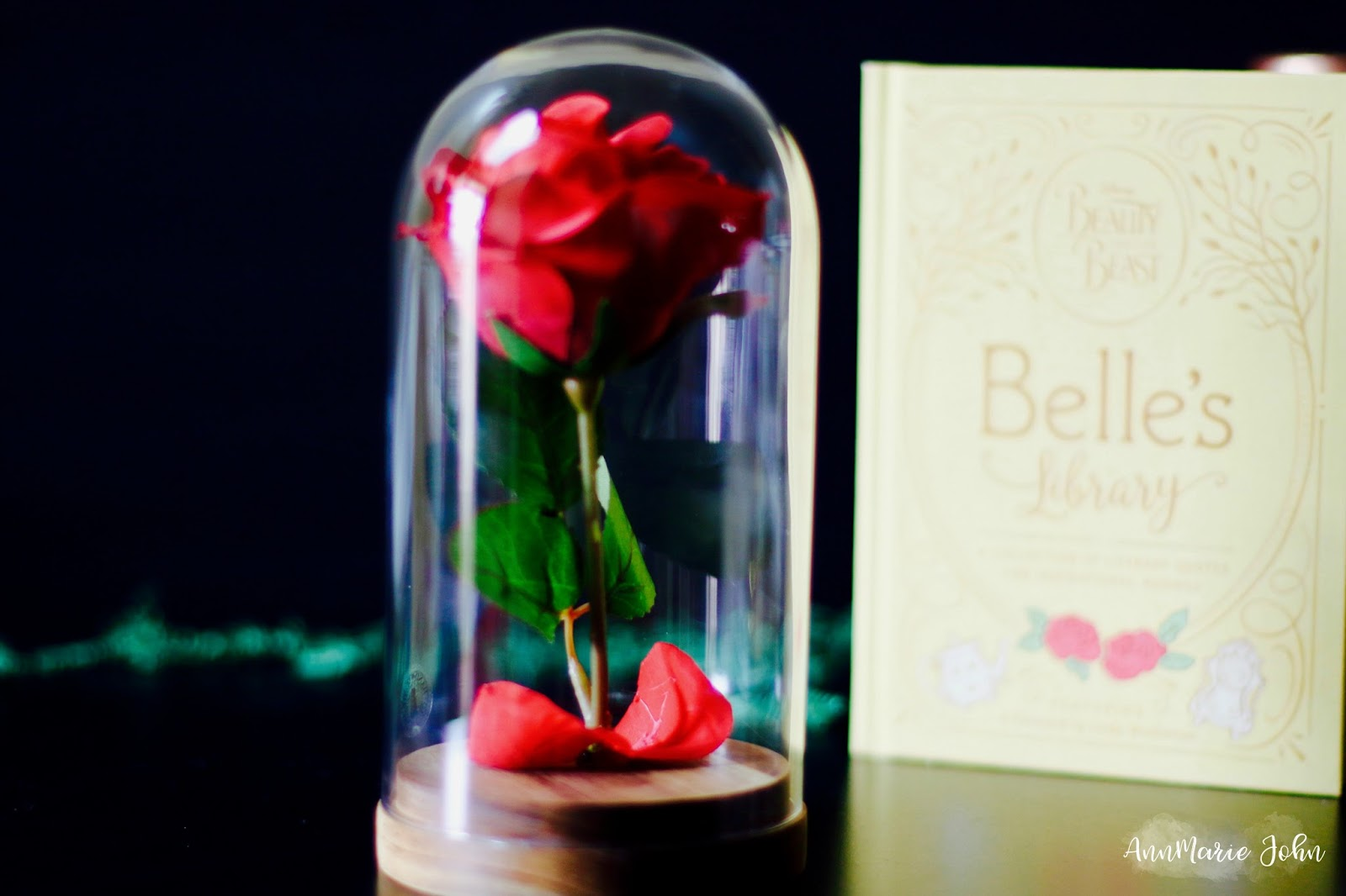 Diy Beauty And The Beast Enchanted Rose Annmarie John
