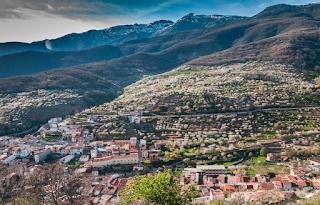 Valle del Jerte, un paisaje cultivado. Panorámica primaveral