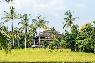 Pakudui - Saudara home - Ubud - Bali