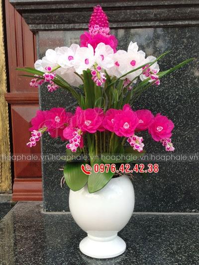 Hoa da pha le o Cat Linh