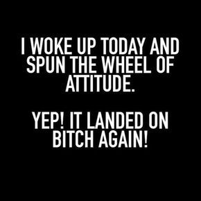 Snarky and Funny Quotes #funnyquotes #funnysayings #sarcasticquotes #snarkyquotes #wittyquotes