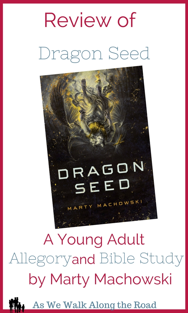 Review of Dragon Seed: young adult Christian fiction