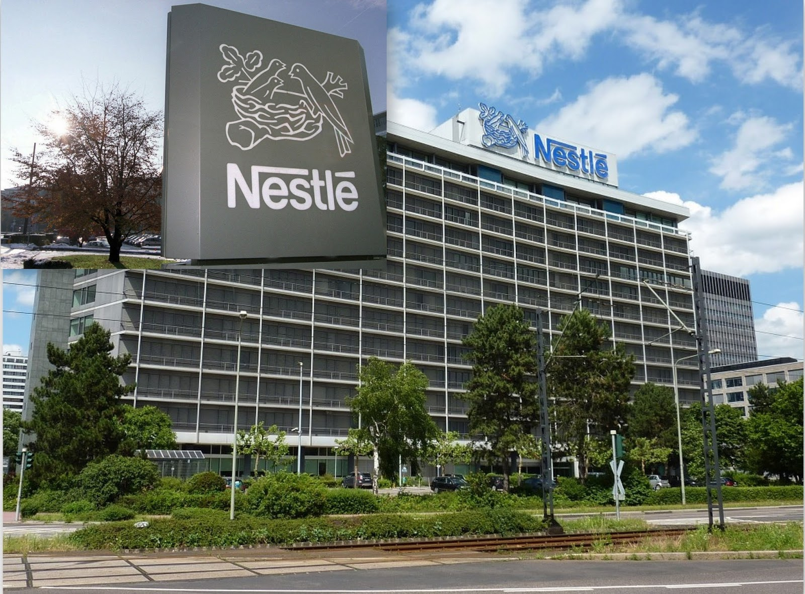 nestle corporation Nestlé health science is pioneering a new field where nutrition becomes therapy we are changing the course of health through research and innovation, and nutritional therapies.