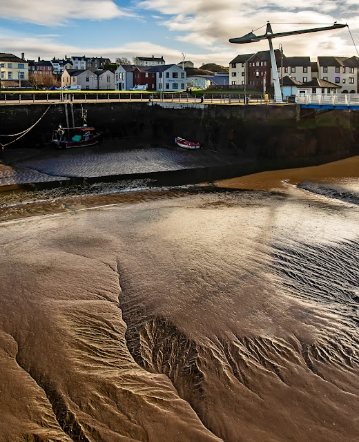Photo of a leaf-like patterns in the mud in Maryport harbour at low tide