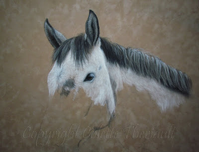 Horse portrait painting in pastel by Equine artist Colette Theriault