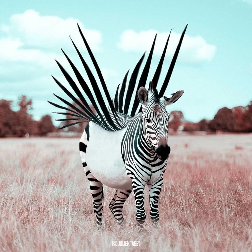 14-A-Punk-Zebra-Julien-Tabet-Animals-and-Architecture-Photoshopped-Surrealism-www-designstack-co