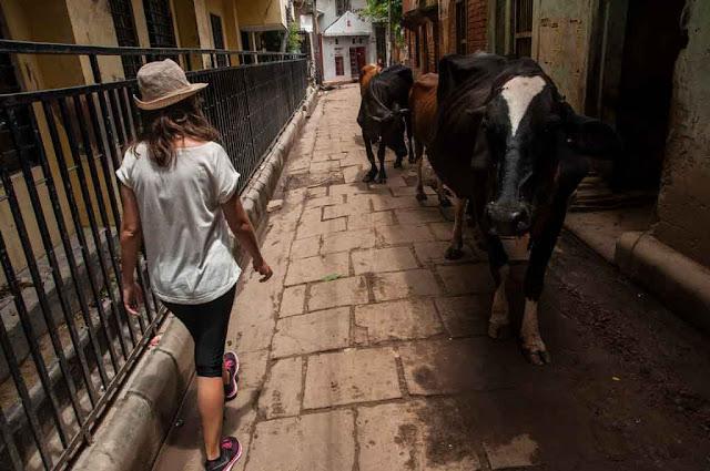 Callejeando por Varanasi