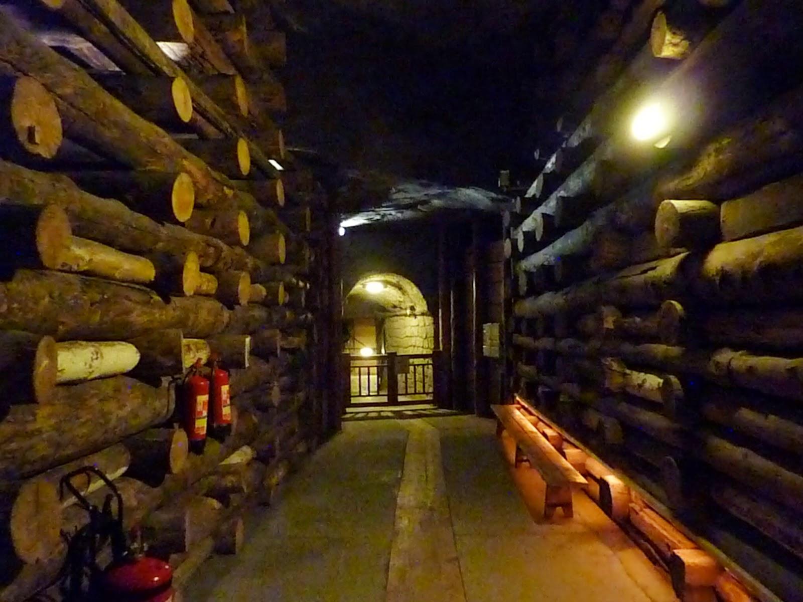 Corridoio con pareti supportate da tronchi