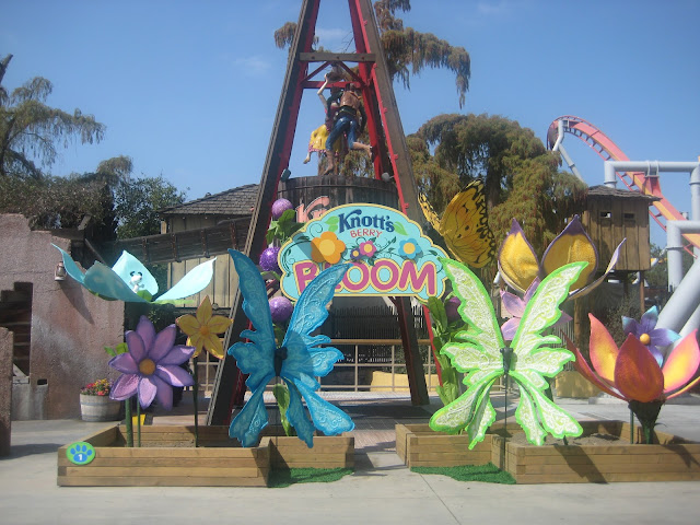 Knott S Berry Bloom In Full Swing This Spring Fun Things