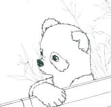 Panda On Zoo Coloring Pages
