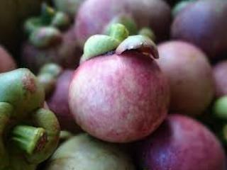 6 Manfaat Buah Manggis Bagi Kesehatan