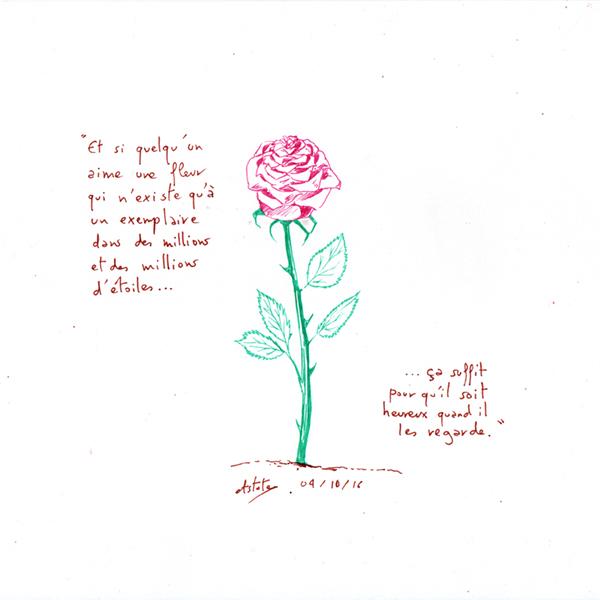 La rose - Et si quelqu'un aime une fleur qui n'existe qu'à un exemplaire dans des millions et des millions d'étoiles