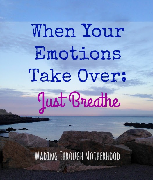 When Your Emotions Take Over: Just Breathe