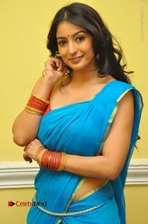 Telugu Actress Vaibhavi Stills in Blue Saree at Www.Meena Bazaar Movie Opening  0031.JPG