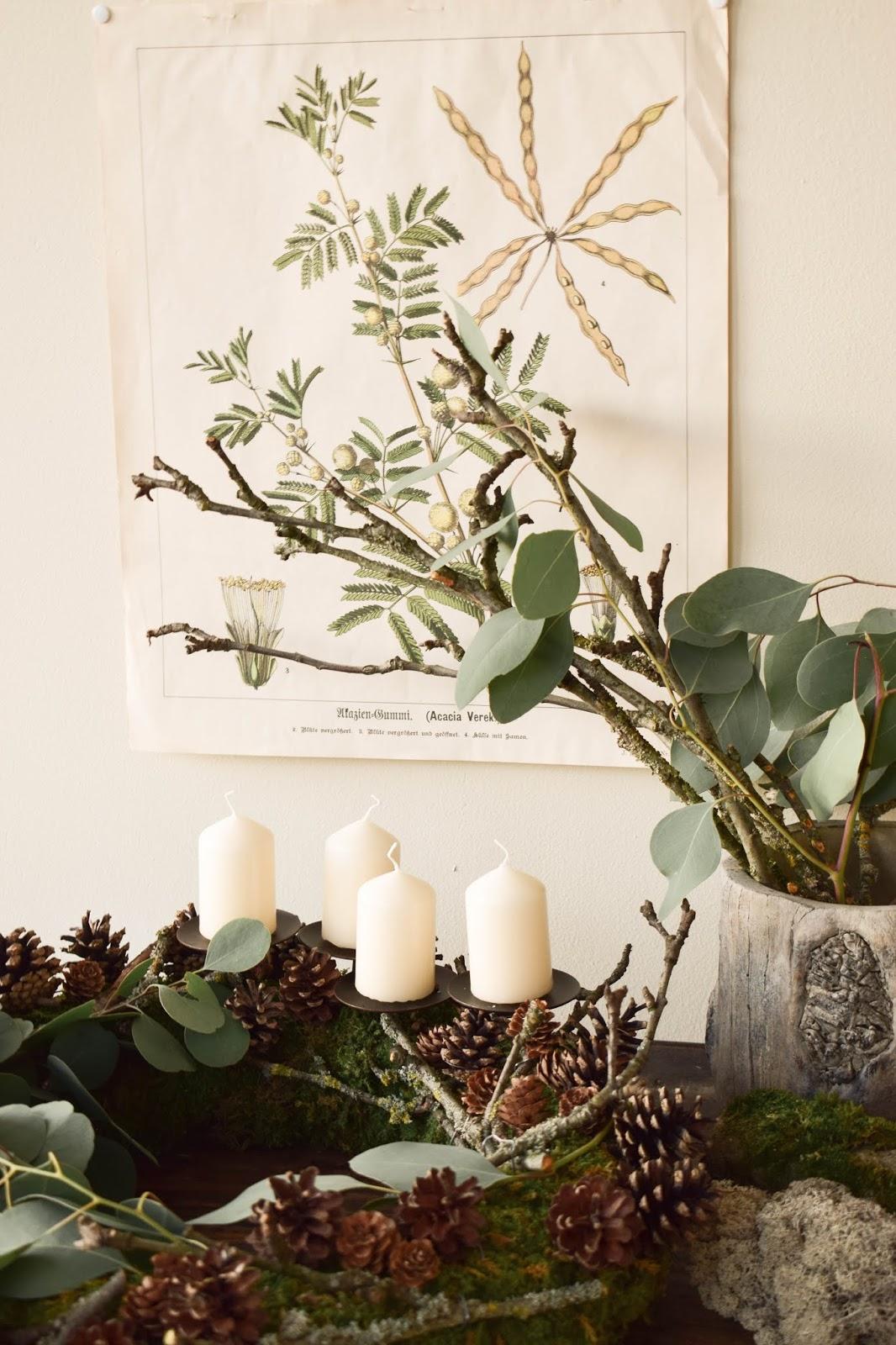 Adventskranz selber machen. DIY Mooskranz für Advent mit Zapfen, Eukalyptus, Ästen und ganz viel Natur. Adventskranz natürliche Deko Ideen