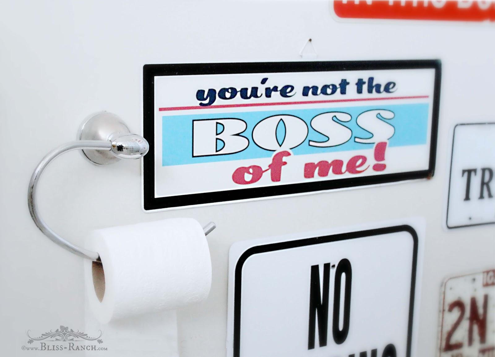 Boys Bathroom Bliss-Ranch.com