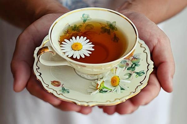 Chá de camomila. chás emagrecedores para perder barriga