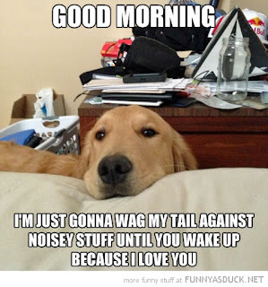 funny dog saying good morning picture