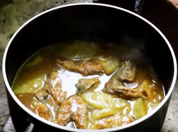 Hilsa fish and ash gourd curry
