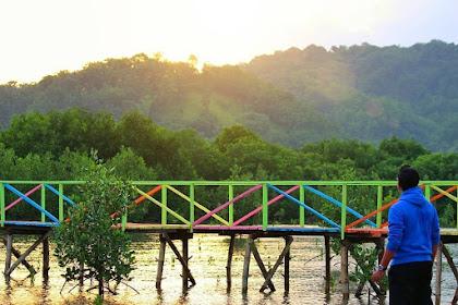 Swafoto di Jembatan Pelangi, Mangrove, Bawean