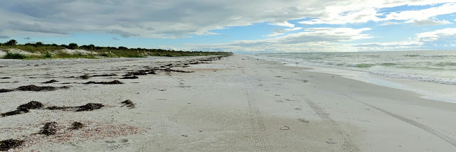 Caladesi Island State Park, Florida USA