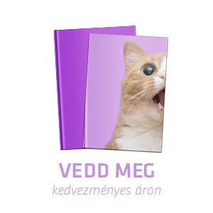 http://www.mora.hu/konyv/jelen-kortars-ifjusagi-novellak