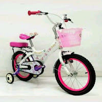 16 wimcycle jolly ctb sepeda anak