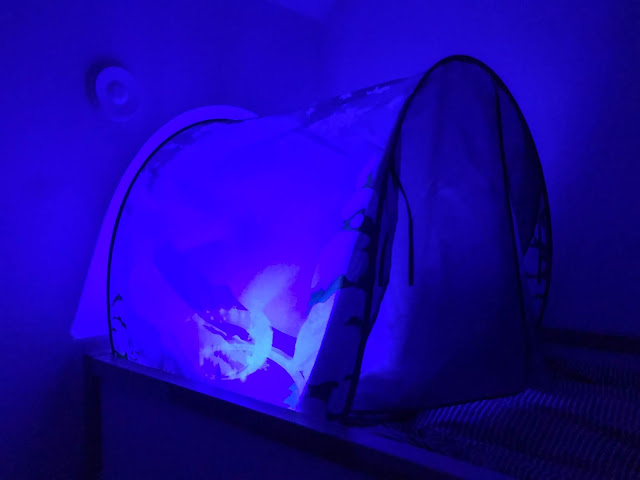 The Dream Tent at night with a blue light glowing from inside