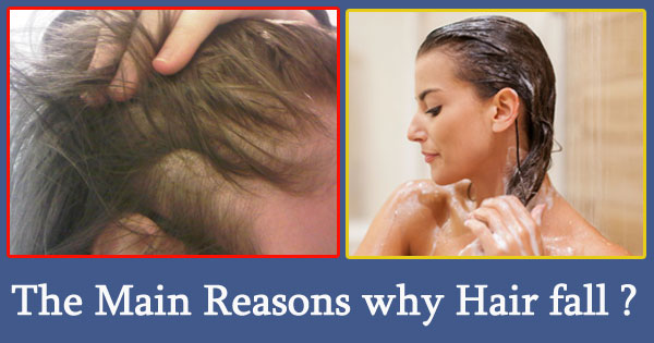 The Main Reasons why Hair fall out