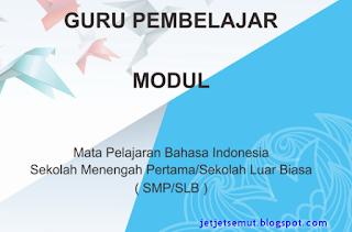Modul diklat guru pembelajar bahasa Indonesia utuk SM/SMP LB