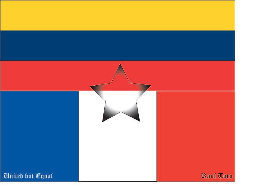 my own flag learn adobe illustrator ms roche s technology
