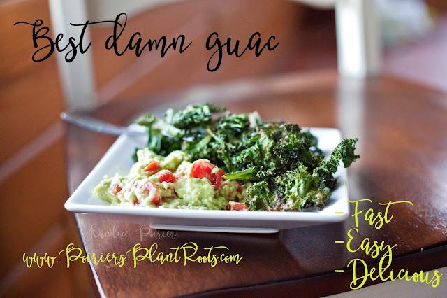 guacamole, healthy guacamole, iifym snacks, avocado, weight loss