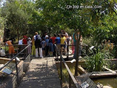 Visita escolar al centro de l'Albera