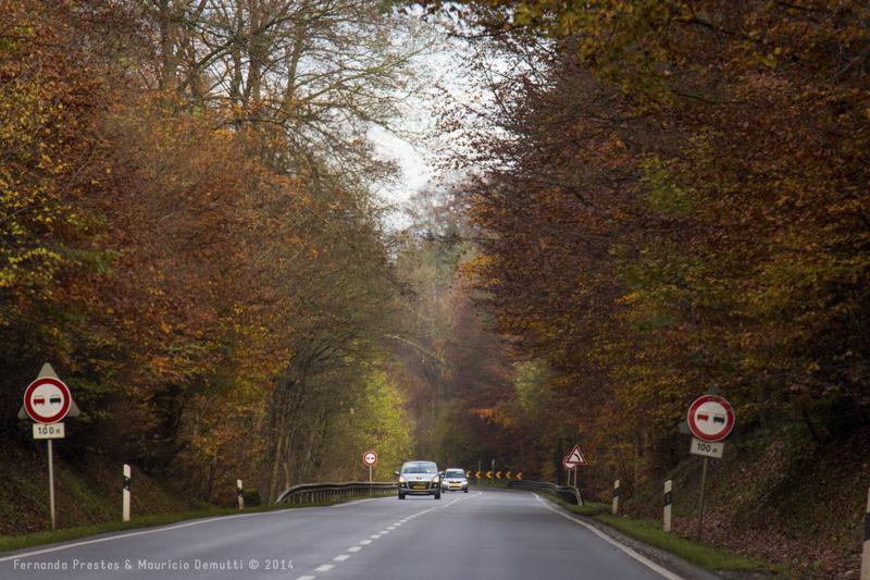 estrada em luxemburgo no outono