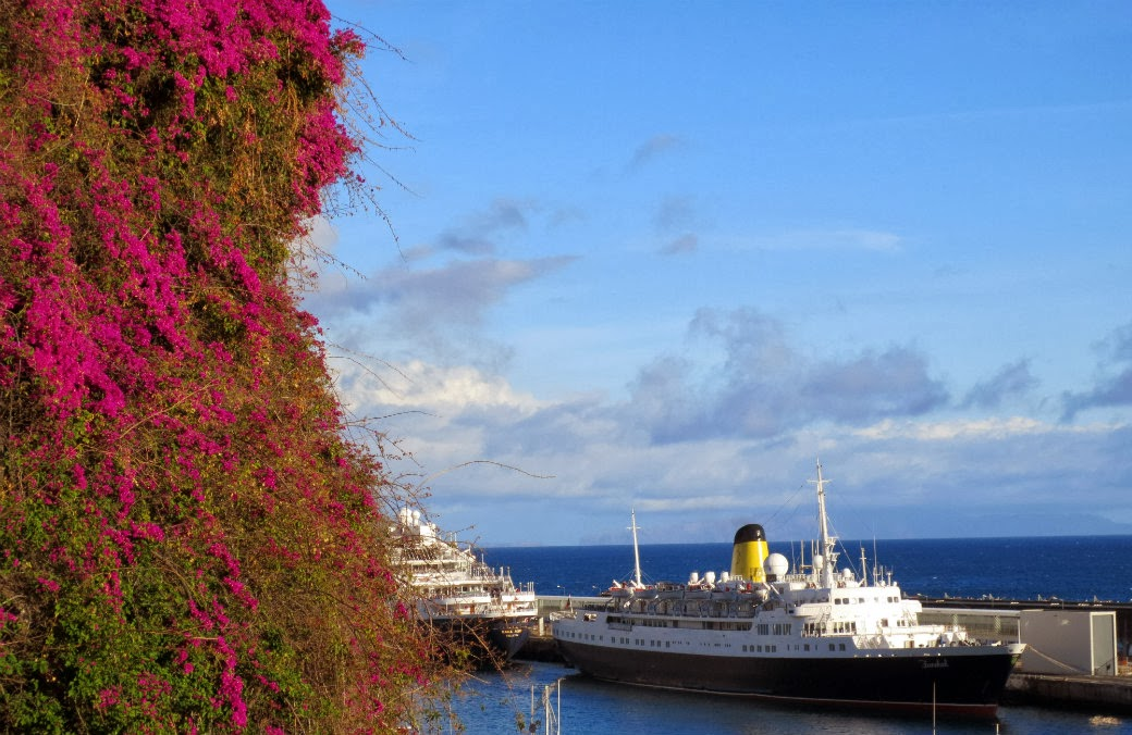 flowers to Funchal cruise ship